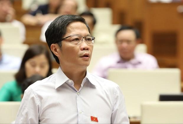 Viet Nam co kha nang tro thanh nha xuat khau gao hang dau the gioi hinh anh 1