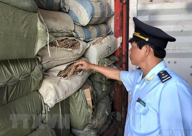 Da Nang: Phat hien 5 container nghi la duoc lieu nhap lau hinh anh 1