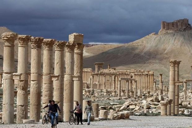 Phien quan IS chiem giu hoan toan thanh pho co Palmyra hinh anh 1