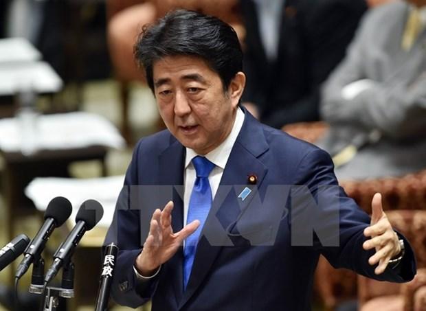 Nhat Ban: Thu tuong Shinzo Abe duoc bau lam Chu tich LDP hinh anh 1