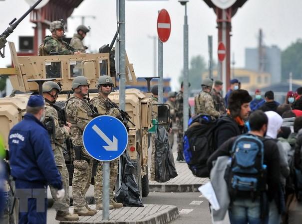 Hungary: Khung hoang di cu de doa su on dinh tai chau Au hinh anh 1