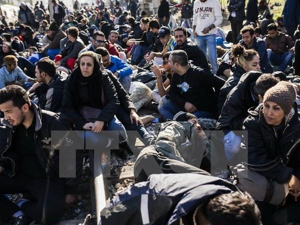 Canada cong bo ke hoach tiep nhan 25.000 nguoi ti nan Syria hinh anh 1