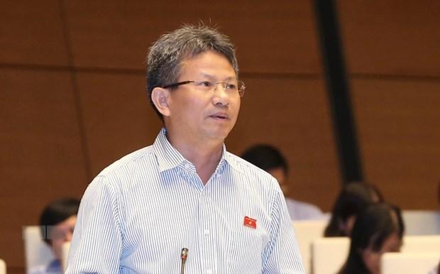Dai bieu Quoc hoi: GDP cao nhung gia tri that Viet Nam duoc bao nhieu? hinh anh 2