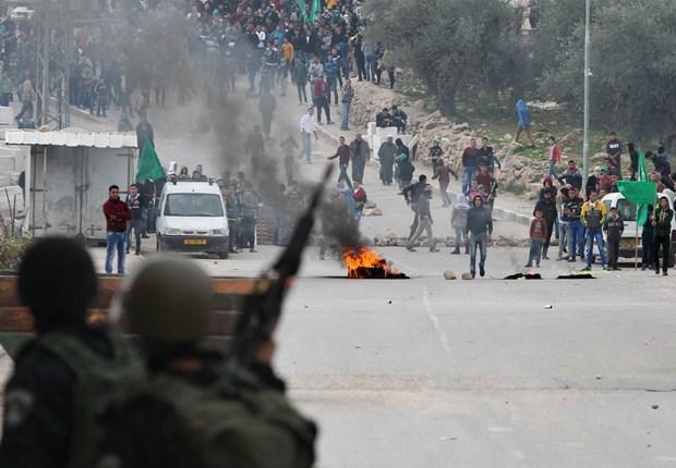 Cach tiep can moi cua EU voi tien trinh hoa binh Israel-Palestine hinh anh 1