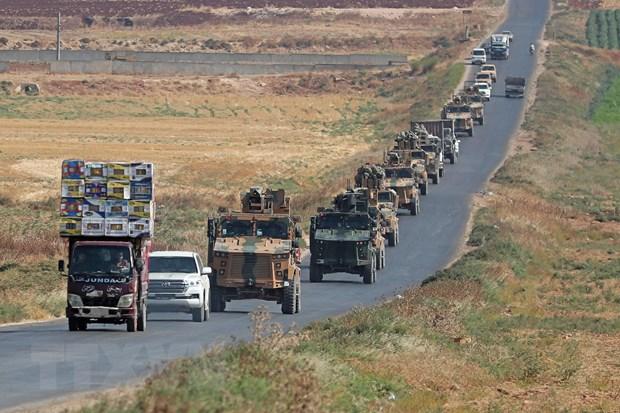 Nga va Tho Nhi Ky dien dam ve tinh hinh Dong Bac Syria hinh anh 1