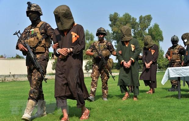 Afghanistan hoan trao doi tu nhan voi nhom phien quan Taliban hinh anh 1