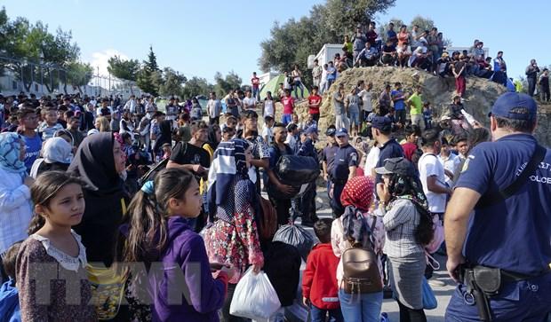 UNHCR: EU can giup Hy Lap giai quyet cuoc khung hoang nguoi di cu hinh anh 1