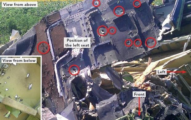 Tinh bao Duc: Ukraine da lam gia du lieu ve vu roi MH17 hinh anh 1