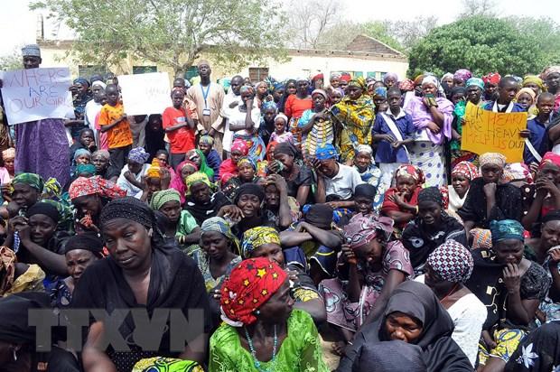 Quan doi Nigeria giai cuu gan 300 nguoi tu tay Boko Haram hinh anh 1