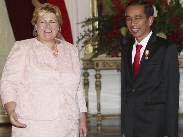 Indonesia va Na Uy hop tac voi Afghanistan theo khuon kho ba ben hinh anh 1