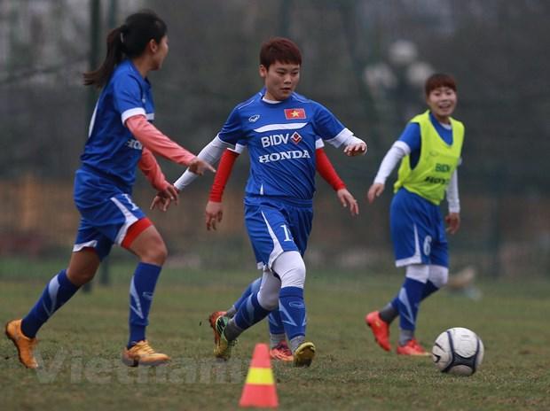[Photo] Tuyen nu Viet Nam miet mai chuan bi cho giac mo Olympic hinh anh 1