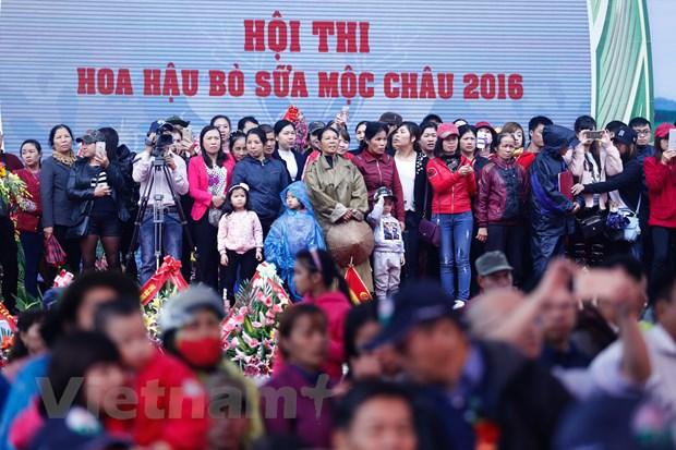 [Photo] Tung bung cuoc thi Hoa hau bo sua Moc Chau 2016 hinh anh 5