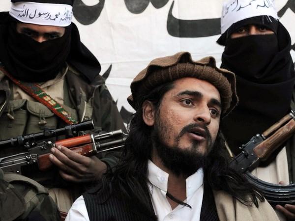 Pakistan lo Taliban tan cong tra thu thu linh bi giet hinh anh 1