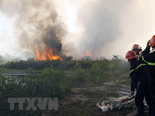 Quang Ngai: Chay rung do bat can, hai nguoi nhap vien hinh anh 1
