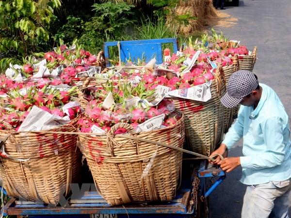 Hang nong, thuy san Viet Nam da co nhung doi thu canh tranh hinh anh 1