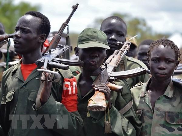 Nam Sudan: Phien quan bat coc 12 nhan vien gin giu hoa binh LHQ hinh anh 1