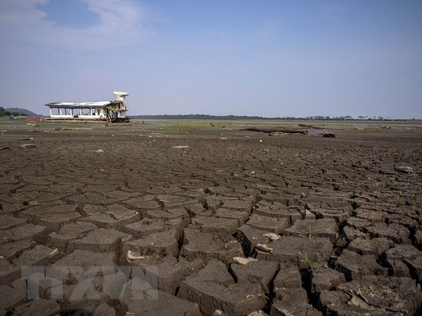 Phap hy vong Brazil se thuyet phuc lanh dao cac nuoc tai COP 21 hinh anh 1