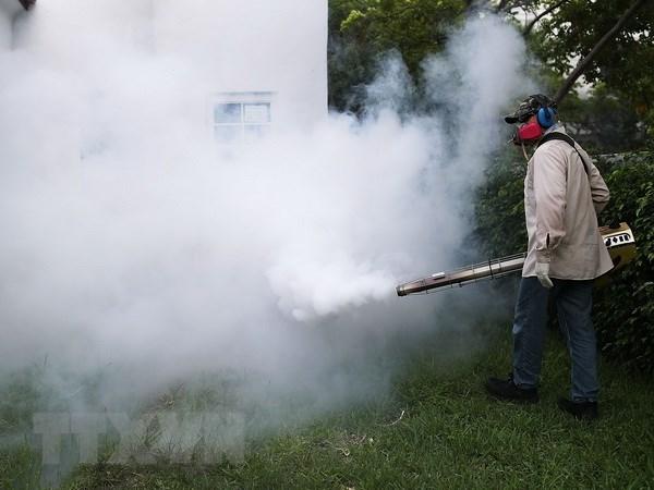 Gioi khoa hoc dinh ngay cong bo vacxin chong virus Zika hinh anh 1