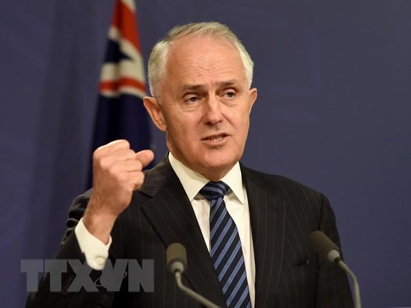 Australia co the ky Hiep dinh FTA voi Anh thoi ky hau Brexit hinh anh 1
