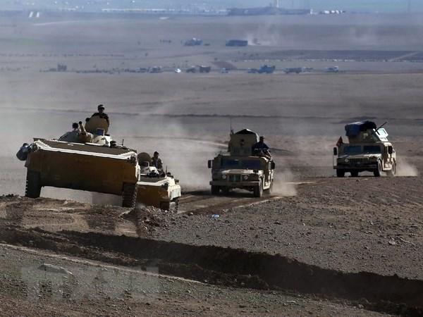 Iraq da giai phong duoc hon 30% khu vuc Tay Mosul hinh anh 1