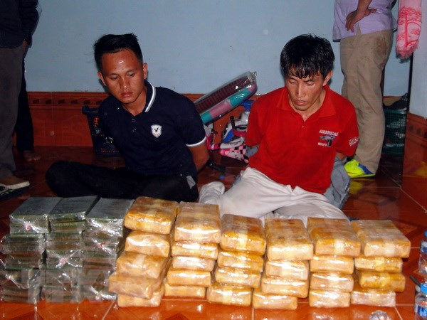 Luc luong Viet Nam-Lao phoi hop pha chuyen an ma tuy lon hinh anh 1