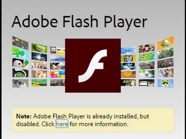 Adobe tuyen bo se