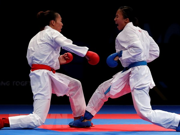 The thao Viet Nam lien tiep gianh Huy chuong Vang SEA Games hinh anh 1