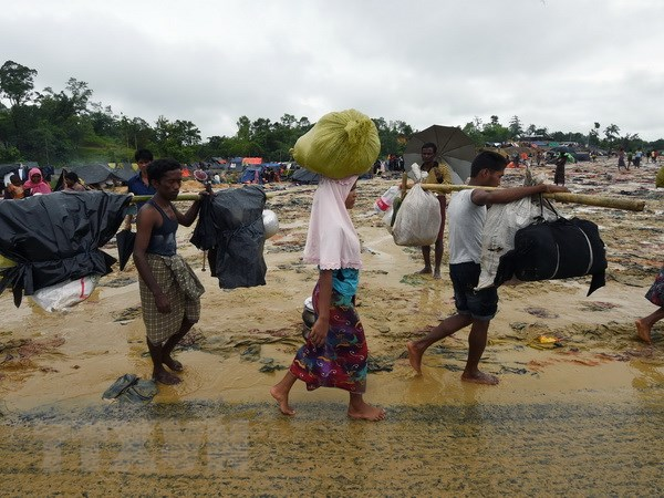Myanmar phat hien mo tap the do phien quan nguoi Rohingya sat hai hinh anh 1