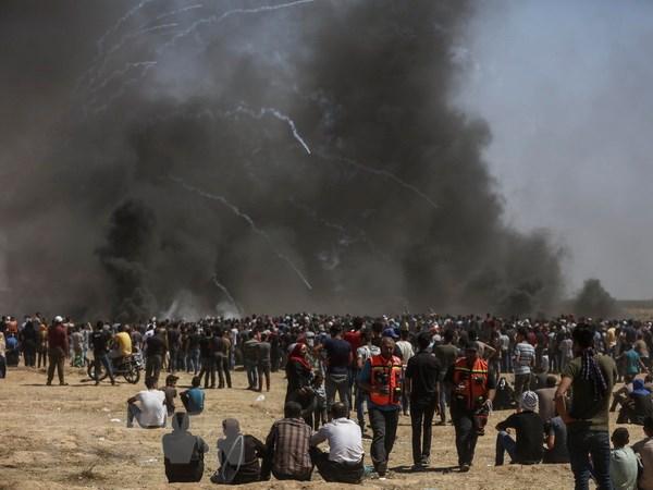 Em be Palestine 8 thang tuoi chet vi hoi cay cua binh linh Israel hinh anh 1