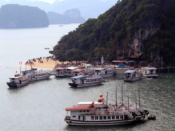 Quang Ninh khong chap thuan du an nha may hoa chat o gan vinh Ha Long hinh anh 1