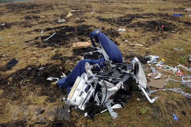 Hoat dong xet xu vu ban roi may bay MH17 se dien ra tai Ha Lan hinh anh 1