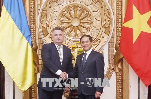 Tham van chinh tri cap Thu truong Ngoai giao Viet Nam-Ukraine hinh anh 1