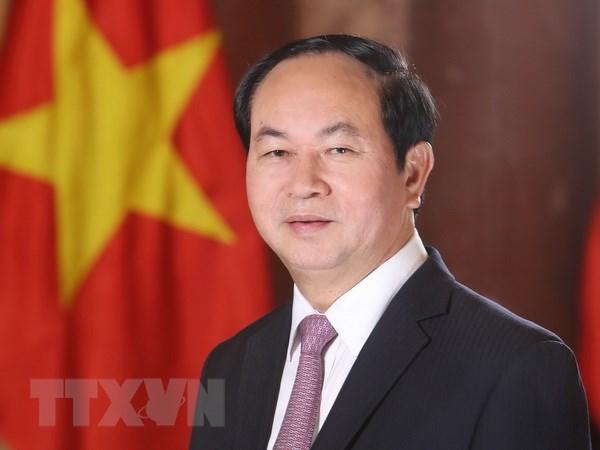 Chu tich nuoc Tran Dai Quang tra loi phong van bao chi Ai Cap hinh anh 1