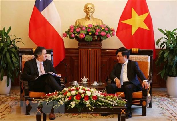 Pho Thu tuong Pham Binh Minh tiep Bo truong Ngoai giao Chile hinh anh 1