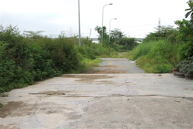 Binh Dinh: Lam ro sai pham trong quan ly dat dai o xa My An hinh anh 1