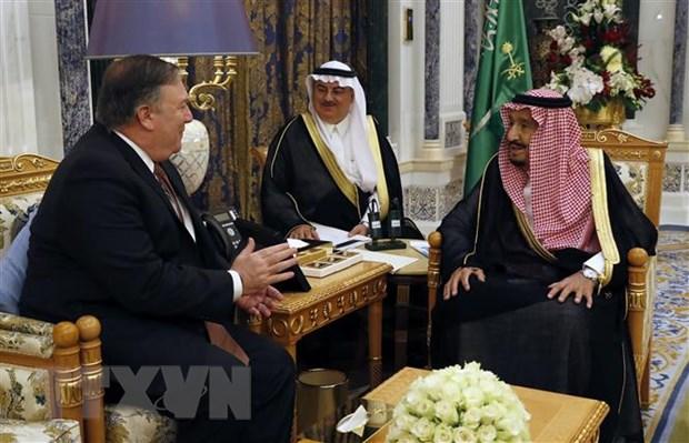 Ai Cap, Bahrain ca ngoi hanh dong cua quoc vuong Saudi Arabia hinh anh 1