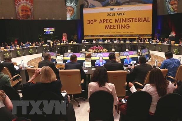 Pho Thu tuong du Hoi nghi lien Bo truong Ngoai giao-Kinh te APEC hinh anh 2