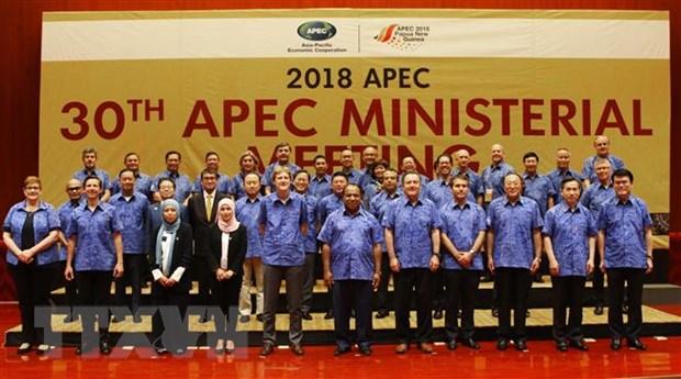 Pho Thu tuong du Hoi nghi lien Bo truong Ngoai giao-Kinh te APEC hinh anh 1