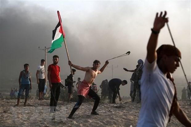 Nga san sang lam trung gian hoa giai giua Israel va Palestine hinh anh 1