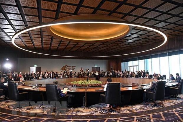 Papua New Guinea ra tuyen bo cua Chu tich luan phien APEC hinh anh 1
