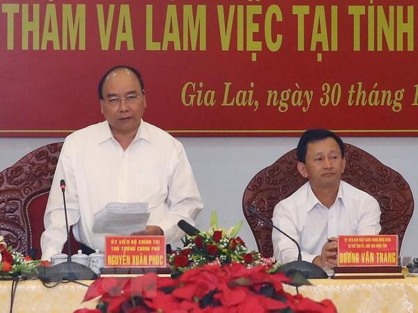 Thu tuong Nguyen Xuan Phuc: Gia Lai can tiep tuc tang do che phu rung hinh anh 1