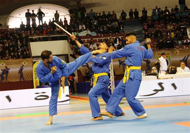 Thanh lap Lien doan Vovinam-Viet Vo dao khoi cac nuoc Arab hinh anh 1