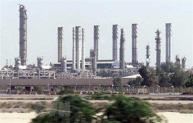 IEA: Saudi Arabia van la nha xuat khau dau mo lon nhat the gioi hinh anh 1