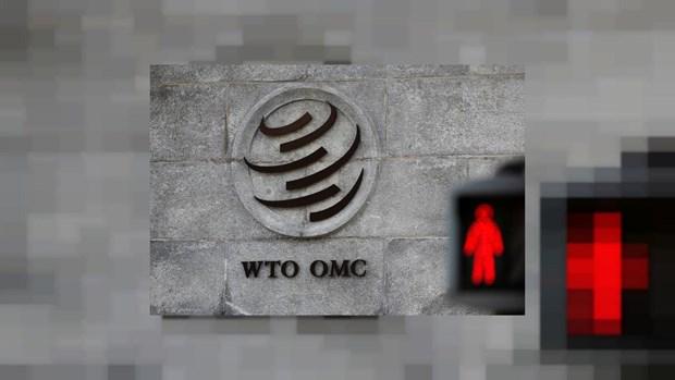 UAE de don khieu nai lenh cam hang hoa cua Qatar len WTO hinh anh 1