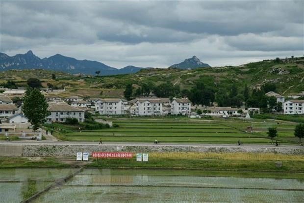 Doanh nghiep Han Quoc keu goi mo cua lai khu cong nghiep chung Kaesong hinh anh 1