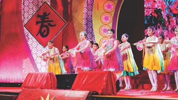 Giao luu van hoa Singapore Festival lan thu nhat se dien ra tai Ha Noi hinh anh 1