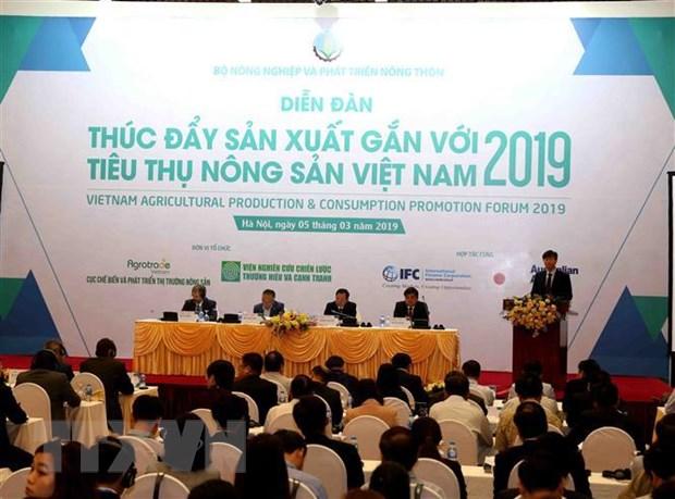 Nong san Viet can tim loi the o tung san pham de phat trien thi truong hinh anh 2