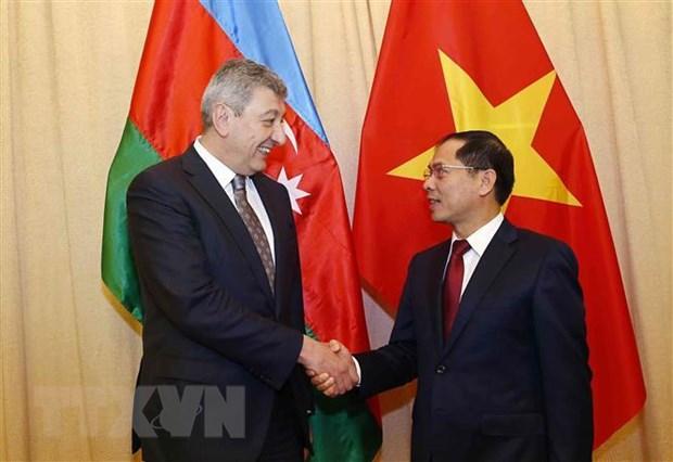 Tham van chinh tri giua Bo Ngoai giao Viet Nam va Azerbaijan hinh anh 1