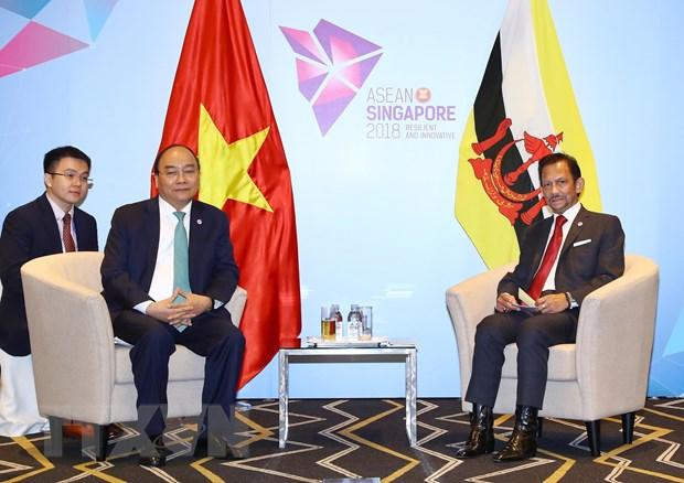 Viet Nam-Brunei tang cuong hop tac tren cac linh vuc hinh anh 2