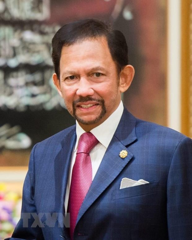 Viet Nam-Brunei tang cuong hop tac tren cac linh vuc hinh anh 1
